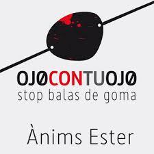 La plataforma Stop bales de goma denuncia la impunidad policial