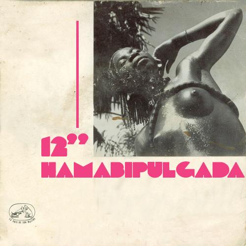 HAMABIPULGADA 06 – 02 – 2014