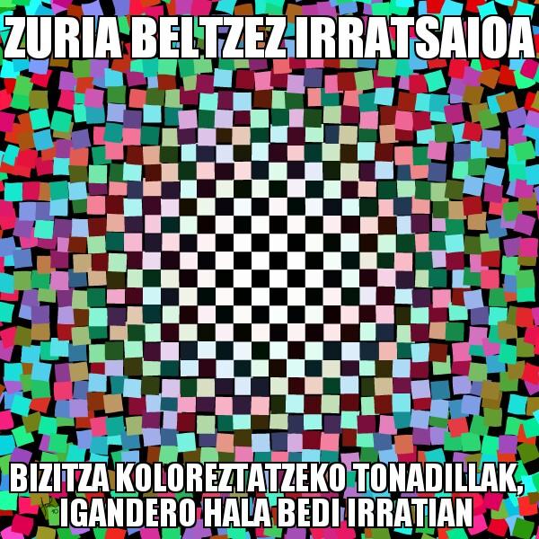205.- Zuria Beltzez 14-06-08