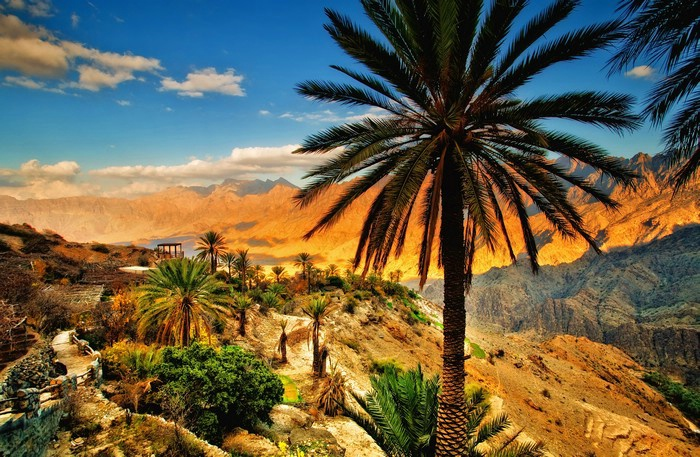 """Eckhard  (viajero  y  guía):  """"En  todo  Omán  vas  a  percibir  el  aroma  a  incienso"""""""
