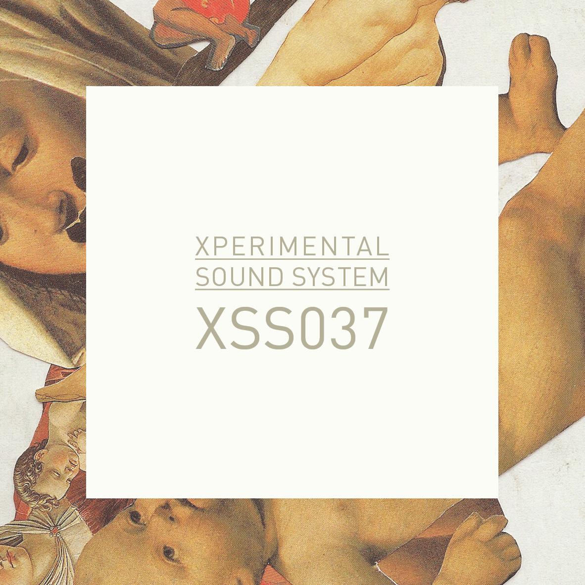 XSS037 / Cubo