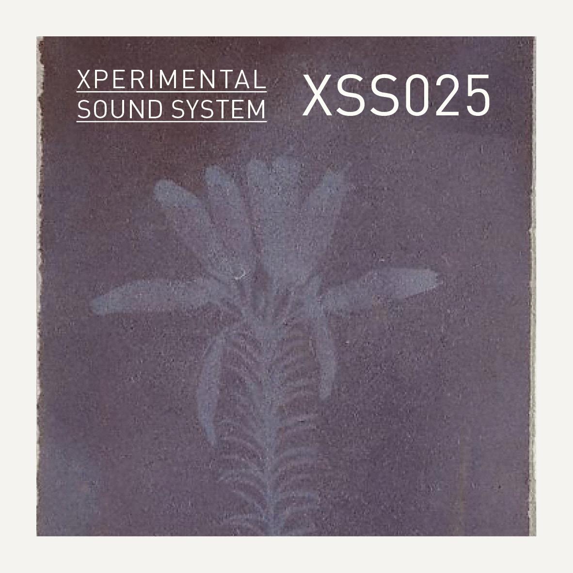 XSS025 / Cubo