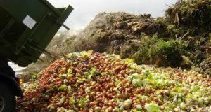 FAO-pide-reducir-desperdicio-de-alimentos