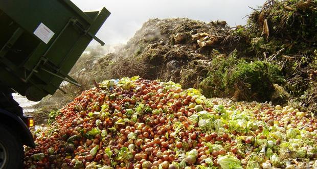 Del mostrador a la basura: el derroche alimentario y la cultura de la prisa