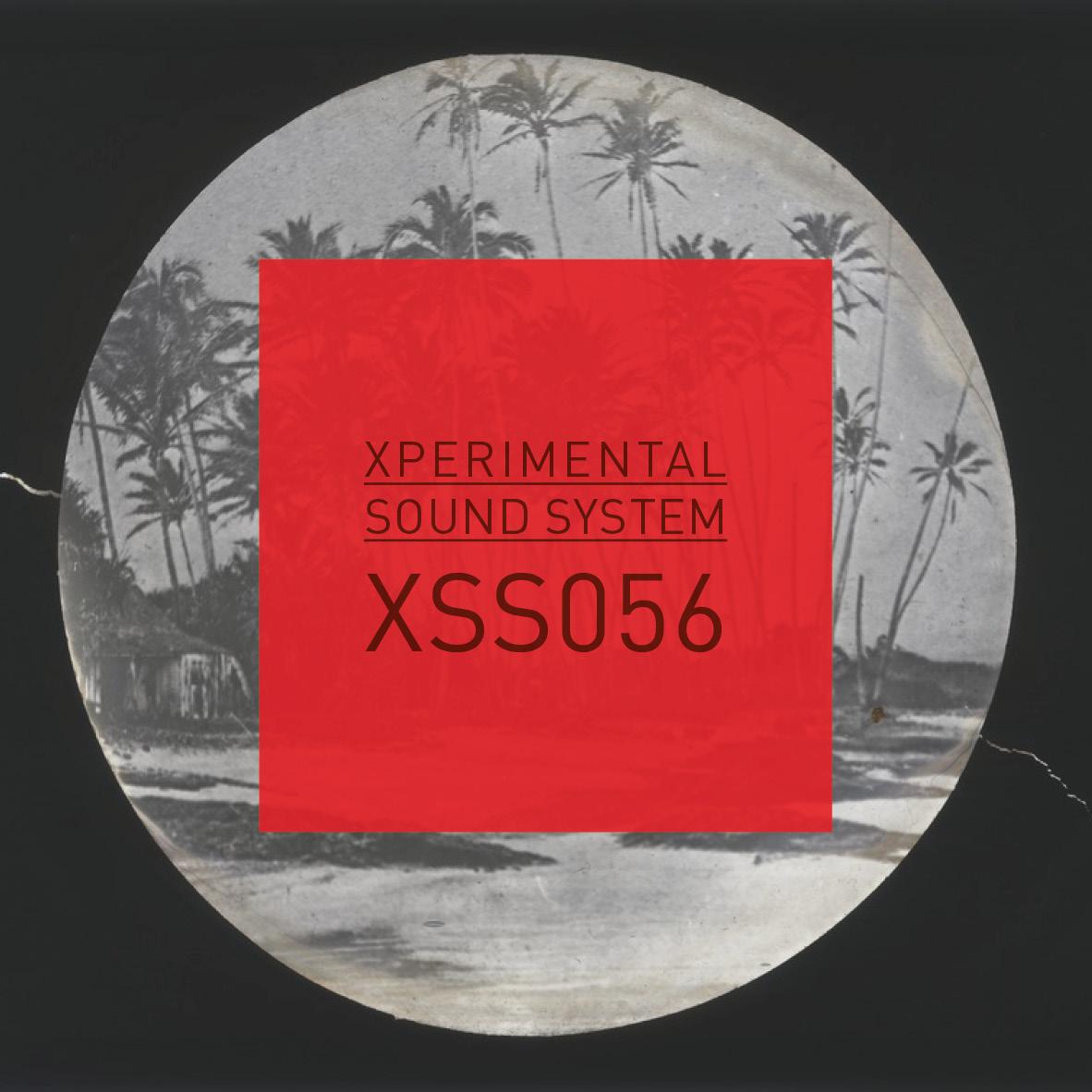 XSS056  /  Cubo