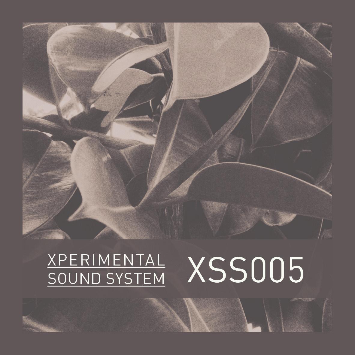 XSS005 / Cubo