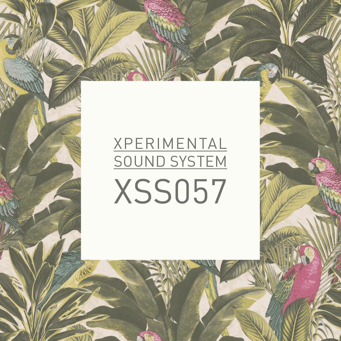 XSS057  /  Cubo