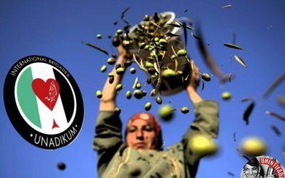 Brigadistas  en  la  campaña  de  la  oliva.