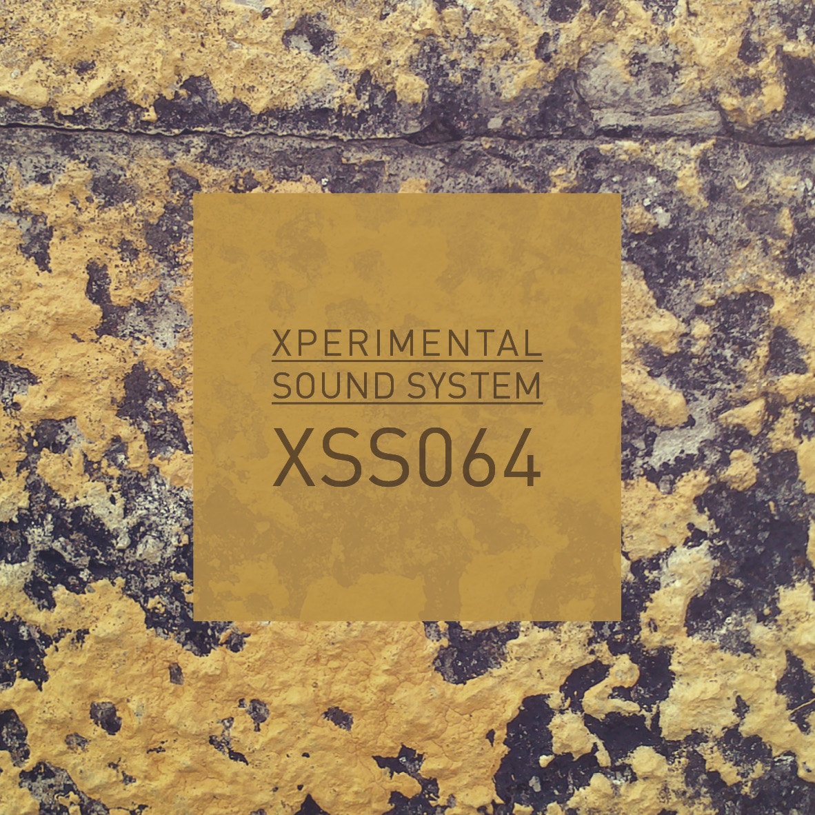 XSS064  /  Cubo