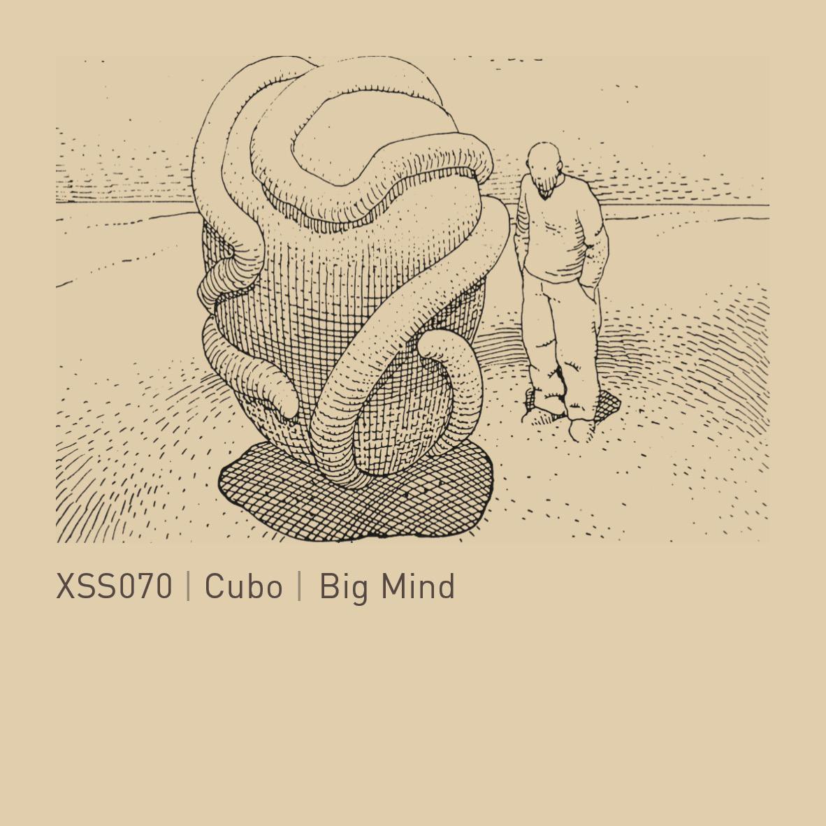 XSS070  |  Cubo  |  Big  Mind