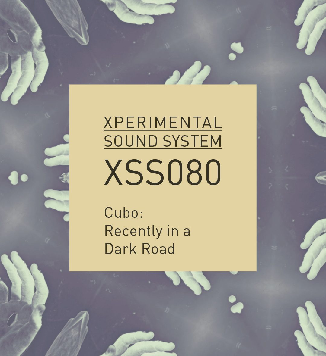 XSS080 | Cubo | Recently in a Dark Road