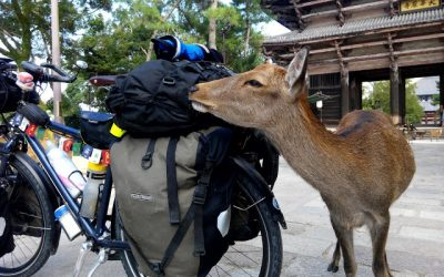Kasakatxan 2.29: Surf y volcanes en Nicaragua / Eneko Redondo, seis meses en bici por las grandes carreteras de altura de Asia Central y la isla del Sol Naciente