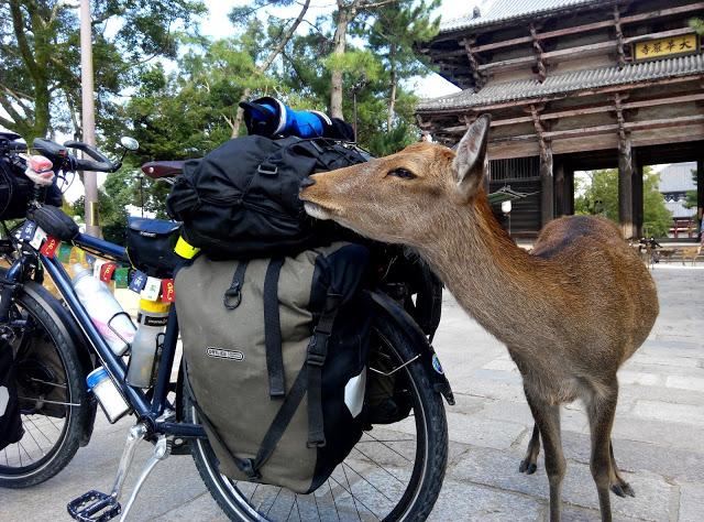 Kasakatxan  :  Surf  y  volcanes  en  Nicaragua  y  Eneko    Redondo,    seis  meses  en  bici    por  las  grandes  carreteras  de  altura  de  Asia  Central  y  la  isla  del  Sol  Naciente.