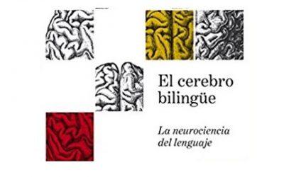 """Albert Costa (Profesor de investigación en el Centro de Cerebro y Cognición de la Universidad Pompeu Fabra):  """"Incorporar una nueva lengua afecta a la robustez del sistema cerebral"""""""