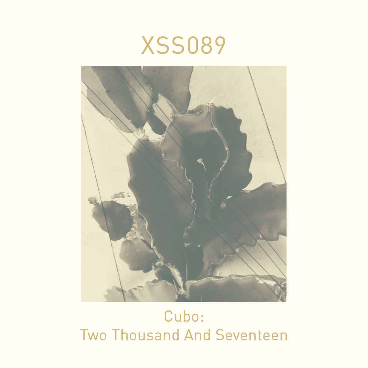 XSS089 | Cubo | Two Thousand And Seventeen