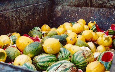 """Hector Barco (ambientalista): """"El despilfarro alimentario al año produce una huella hídrica de 200 km³"""""""