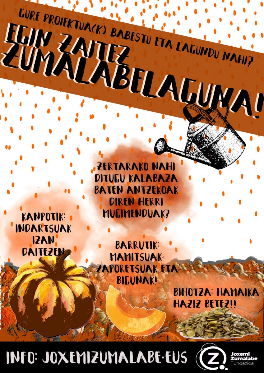"Campaña ""Zumalabelaguna"" cómo apoyo económico a proyectos de la fundación Joxemi Zumalabe"