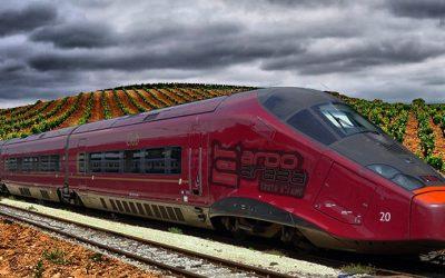 Ramón Rabanera se enfrenta al PP central ante la amenaza de que el TAV cruce los viñedos de la Rioja Alavesa