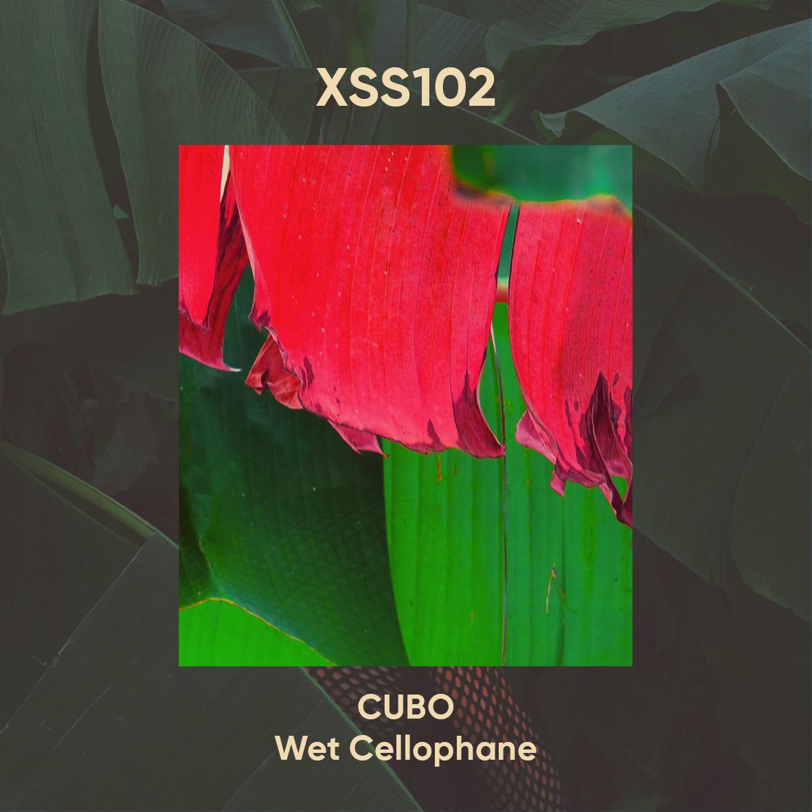 XSS102  |  Cubo  |  Wet  Cellophane