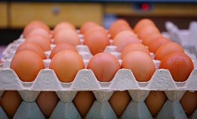 Consecuencias ambientales de la industria del huevo