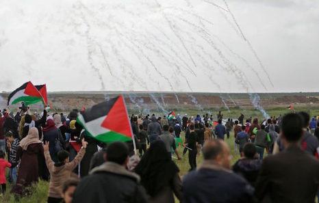 Palestina | Situación extrema en la Franja de Gaza
