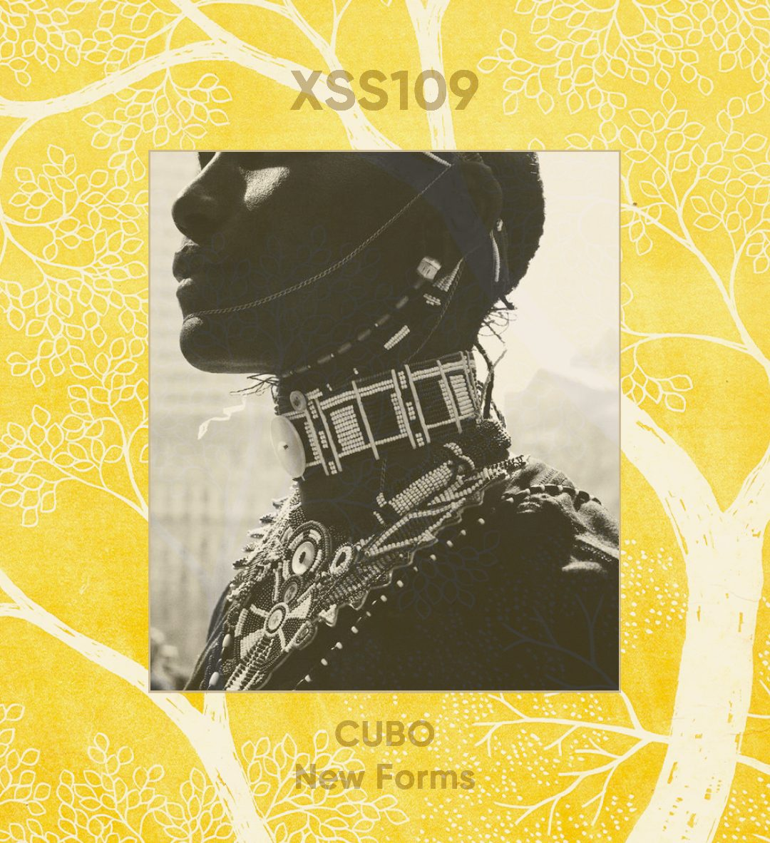 XSS109 | Cubo | New Forms