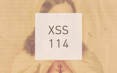 XSS114 | Cubo | Holy Are You