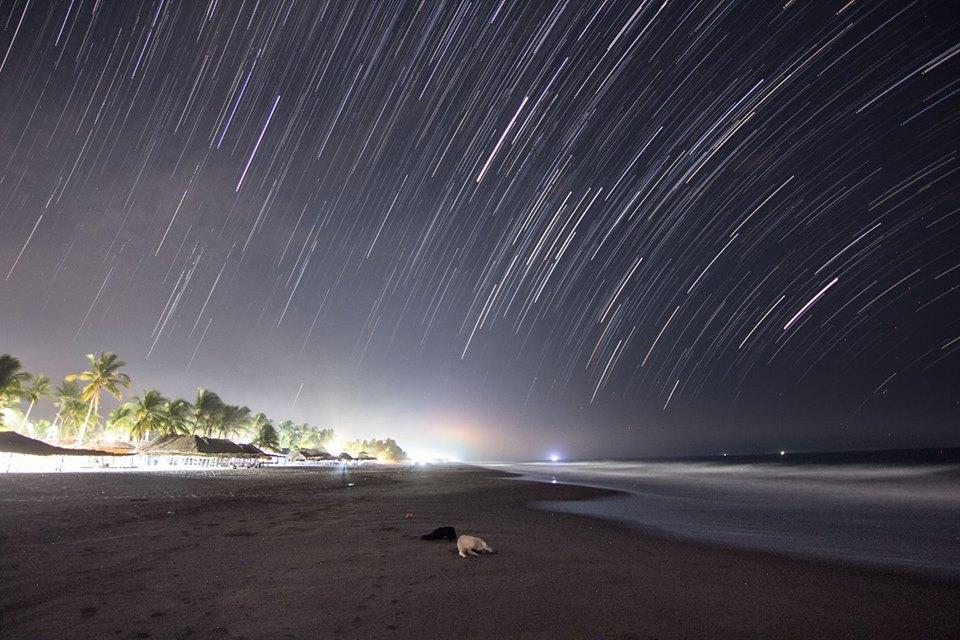 4.27: La Furgoneta cósmica / Noma-das