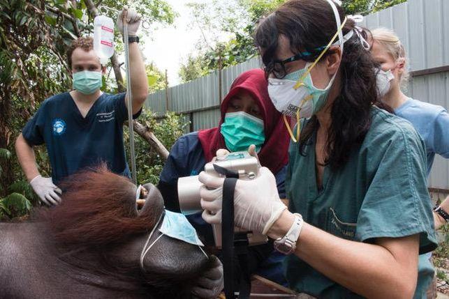 4.22: Marcando el Polo / Una bilbaína en Borneo