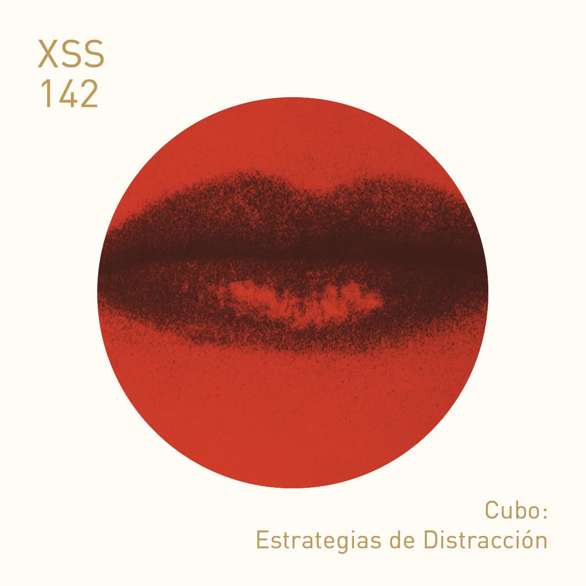 XSS142 | Cubo | Estrategias de Distracción