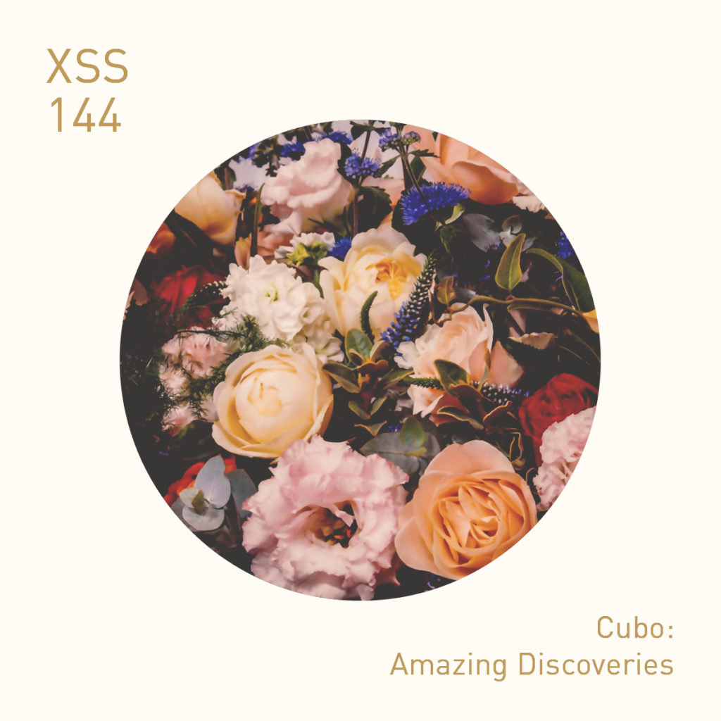 XSS144 | Cubo | Amazing Discoveries