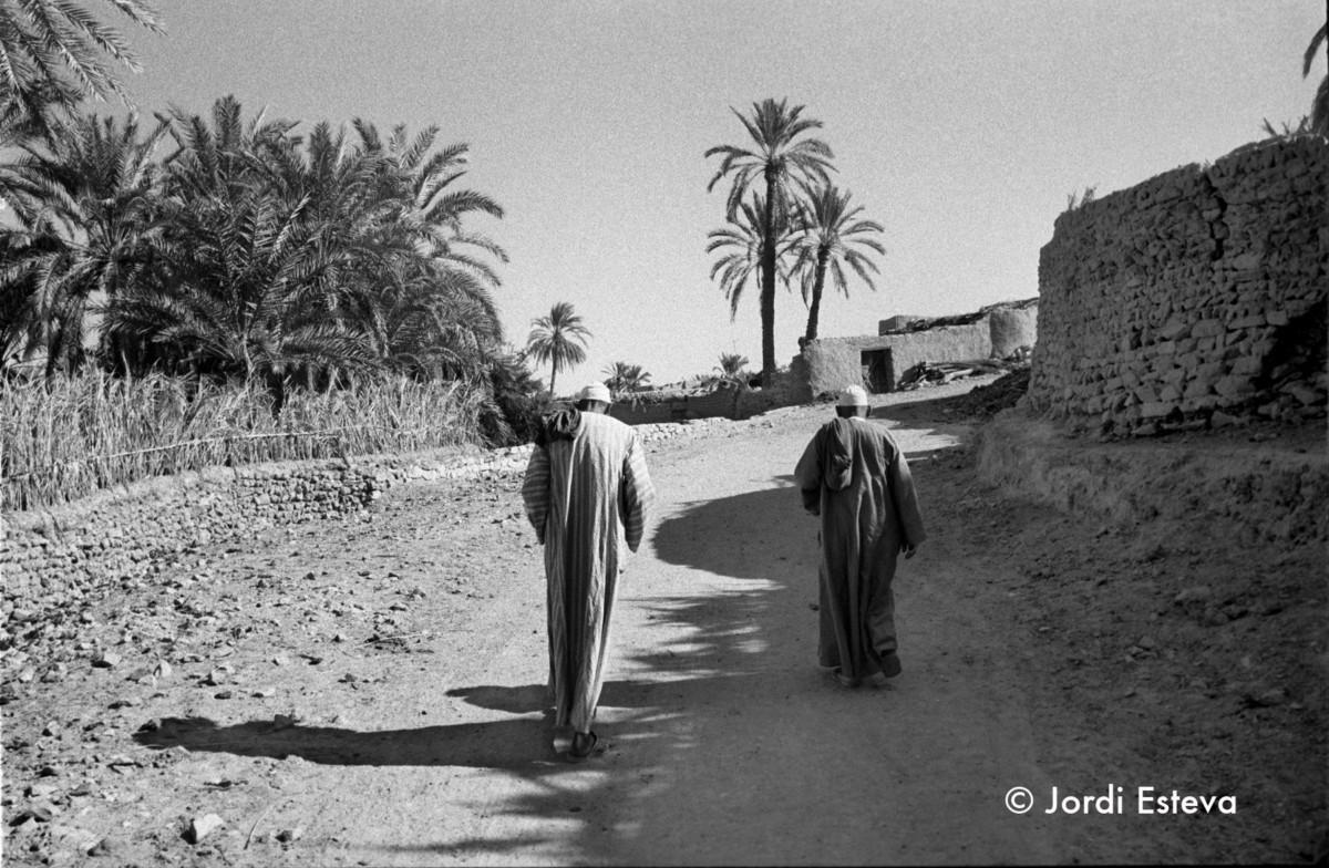 Jordi Esteve Oasis de Egipto