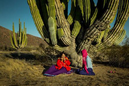5:01: Los Oasis de Egipto con Jordi Esteve / Nuria López fotografiando a los Seris en el desierto de Sonora