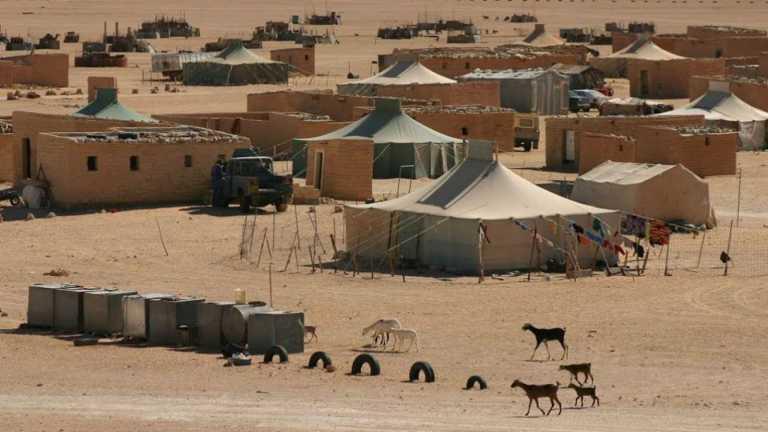 Sahara | S.O.S presas y presos políticos