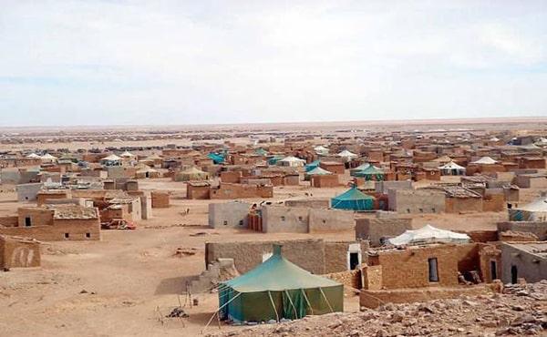 Sáhara | «El lobby de comunicación marroquí quiere silenciar esta guerra»