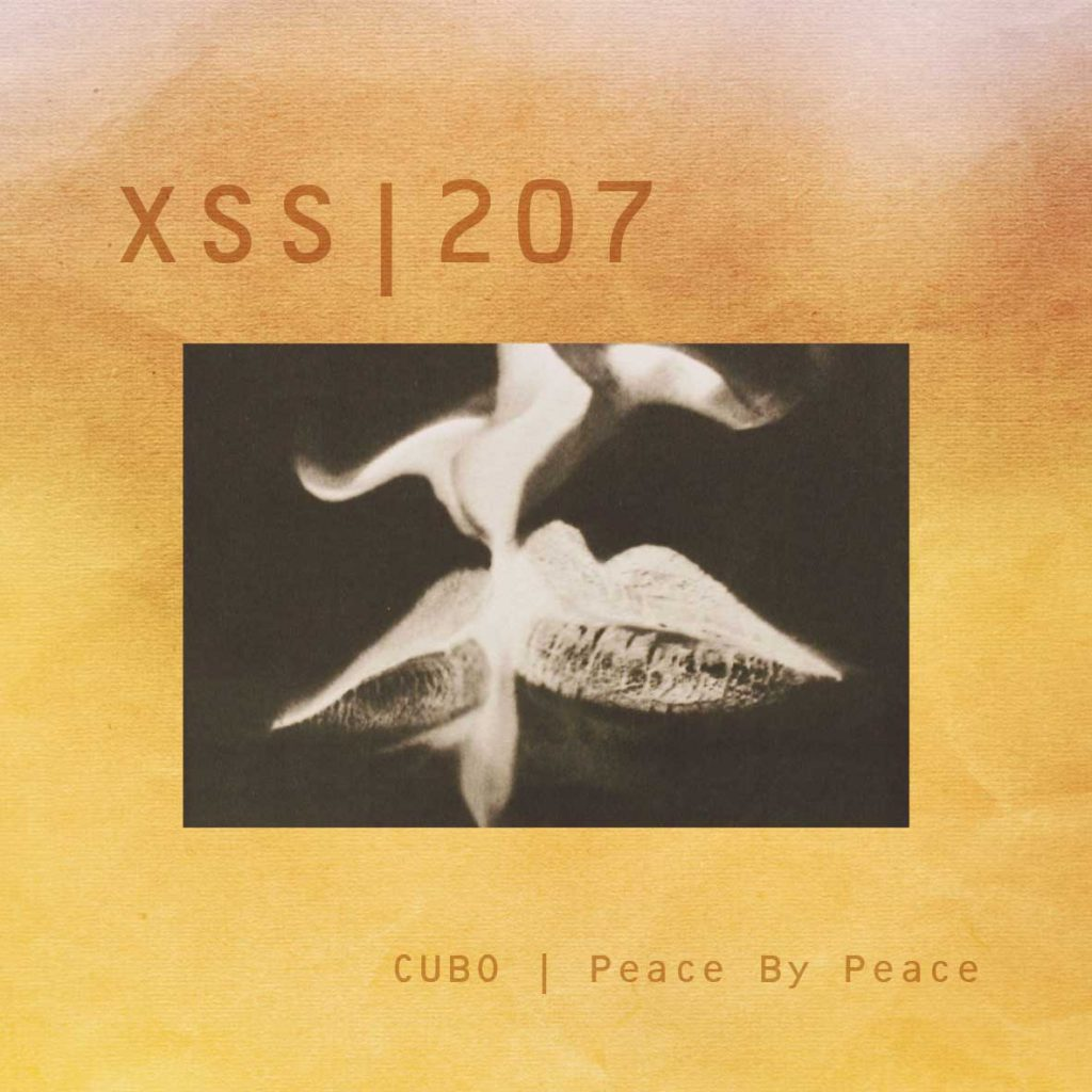 XSS207 | Cubo | Peace By Peace