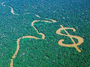 Ekonomia ekologikoa eta txertoen eta hilekoaren arteko lotura